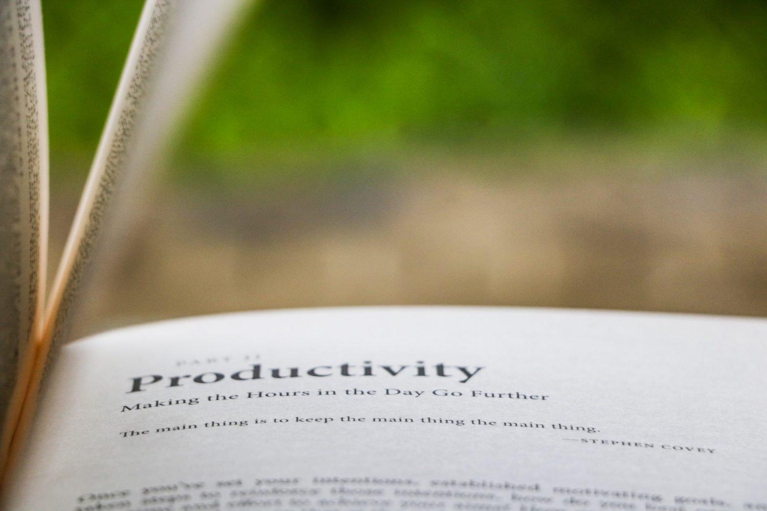 Libro con capitolo sulla produttività